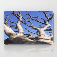Allure iPad Case