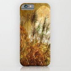 Golden Sunset  Slim Case iPhone 6s