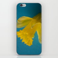 Yellow and Blue iPhone & iPod Skin