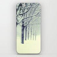Winter's Walk iPhone & iPod Skin
