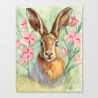 Bunny And Fireweed A089 Canvas Print