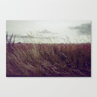 Autumn Field II Canvas Print