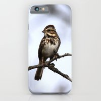 iPhone & iPod Case featuring Song Sparrow by Ornithology