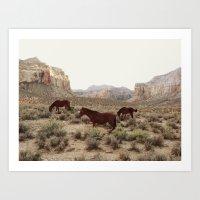 Hualapai Hilltop Horses Art Print