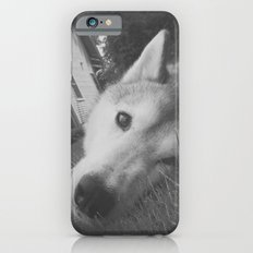 Husky 2 iPhone 6 Slim Case