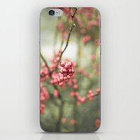 Nature's Candy iPhone & iPod Skin