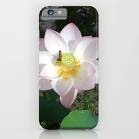 Lotus 1 iPhone 6 Slim Case