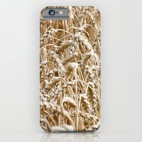 Cornfield iPhone 6 Slim Case