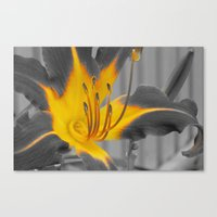 A Bit of Yellow Canvas Print
