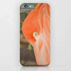 Wary iPhone 6 Slim Case