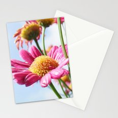 Pink Daisy Flowers Stationery Cards