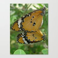 Butterfly Mirror Canvas Print