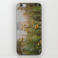 Summer Sunset iPhone & iPod Skin