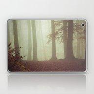 November Light Laptop & iPad Skin