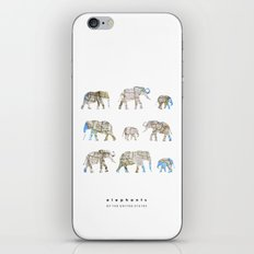 Elephants of the United States iPhone & iPod Skin