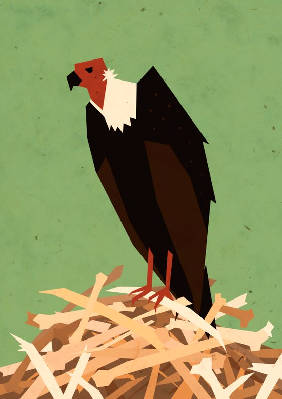 V is for Vulture Art Print