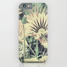 Desert Daisies - Daisy Project in memory of Mackenzie Slim Case iPhone 6s
