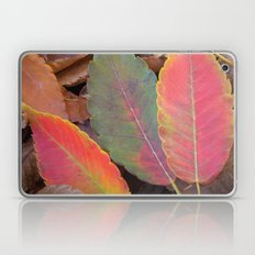 Hello Sweet Autumn Laptop & iPad Skin
