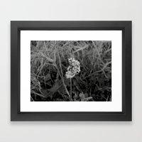 Frozen Wishes Framed Art Print