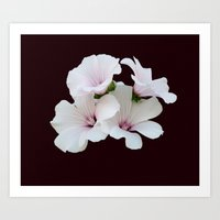 Beautiful summerflowers Art Print