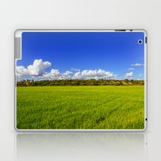 Rice Field II Laptop & iPad Skin