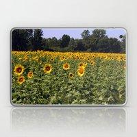 Field Of Sunflowers Colo… Laptop & iPad Skin