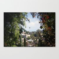 framed palm Canvas Print