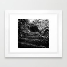The Woodland Stair Framed Art Print