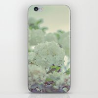 Spring white flowers iPhone & iPod Skin
