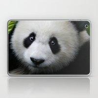 Giant Panda Cub Laptop & iPad Skin