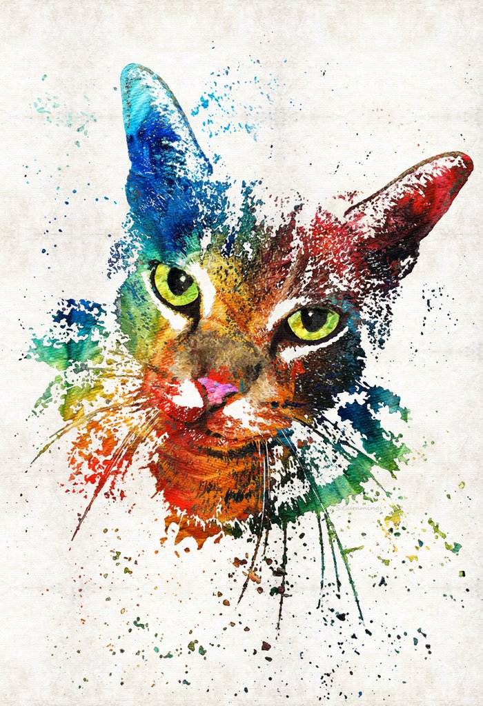 Colorful cat art by sharon cummings canvas print by sharon for Cat paintings on canvas
