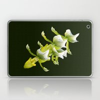 Green Orchid Laptop & iPad Skin