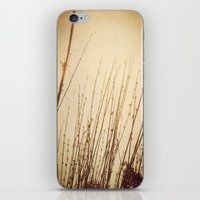 You Will Find It Here iPhone & iPod Skin