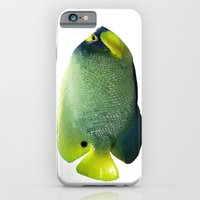 iPhone Cases featuring Blue and Yellow Fish by Regan's World