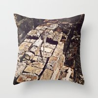 Some Tales Were Not Meant to be Told Throw Pillow