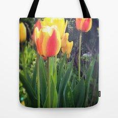 Spring Tulips in Bloom Tote Bag