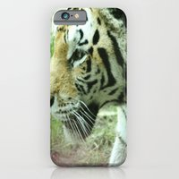 iPhone & iPod Case featuring Stalk by Devyn Caitlin
