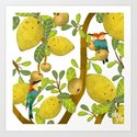 Mangoes and Bee Eaters Art Print