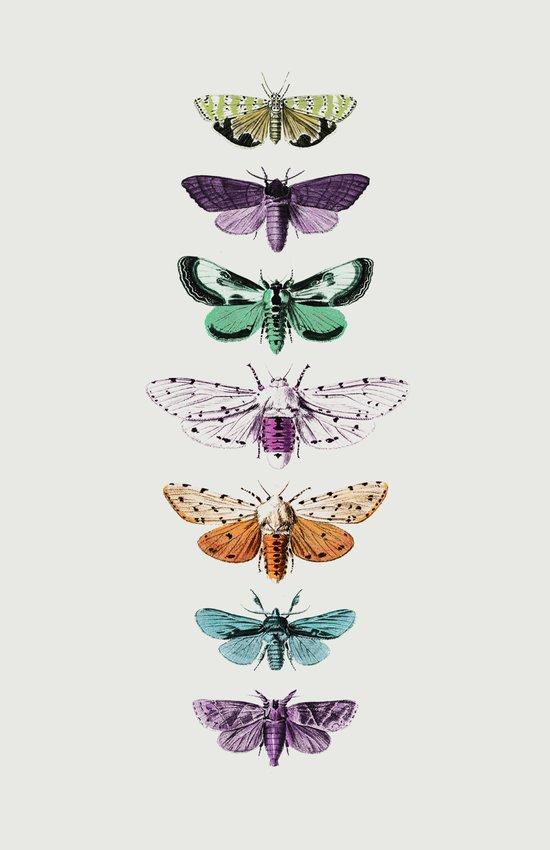Techno-Moth Collection Art Print