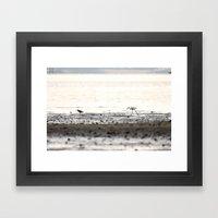 Scroll on the beach. Framed Art Print