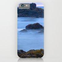 Pescadero Marsh Preserve iPhone 6 Slim Case