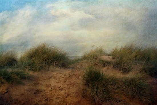 Sand Dunes. Art Print
