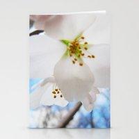 Cherry Blossom-1 Stationery Cards