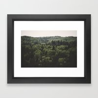 The Woods of Gauja Valley Framed Art Print