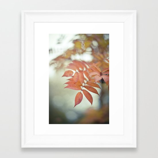 Nature's Glory Framed Art Print
