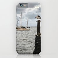 iPhone & iPod Case featuring Sentinel by Cathie Tranent