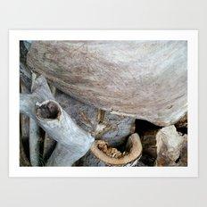 Wood Photography Art Print