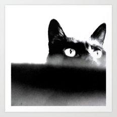 Misty Kitty Art Print