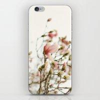 Portraits of Spring - II iPhone & iPod Skin