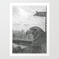 The Urban Peregrine Art Print